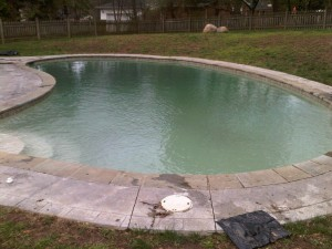 Gunite Pool with Coping Stones