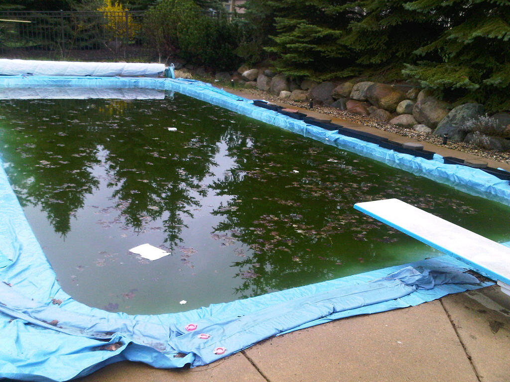 Swimming Pool Opening: A Pictorial – Ask the Pool Guy