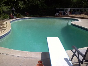 pool, slightly green, ask the pool guy about algae