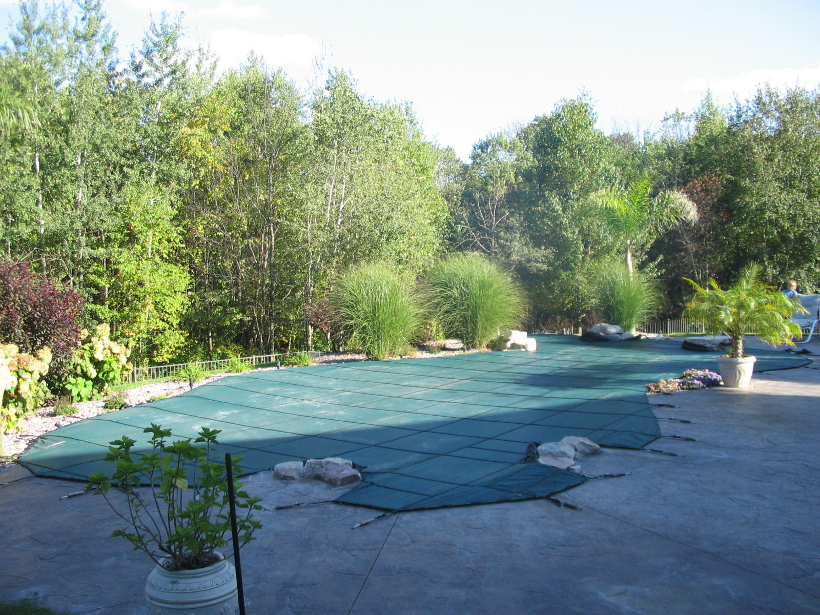 Gunite Pool In Clarkston By Legendary Escapes Pools 41